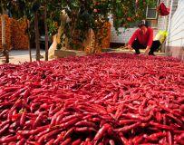 红红火火农家院
