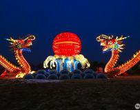 2019方城牡丹园灯展(手机拍摄7)