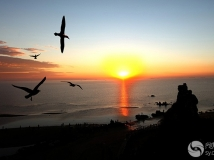 《大众摄影》联谊会投稿--大海的早晨