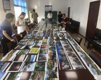 2019中国方城第三届牡丹花节暨万亩花海旅游节摄影大赛获奖名单公布