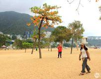 香港浅水湾美景