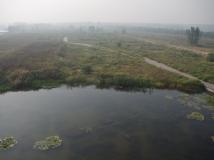 微山湖红荷湿地掠影