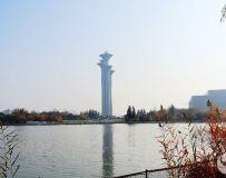 金秋北京奥森公园  红枫银杏彩叶飘飘(40)