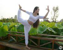 荷塘瑜伽3