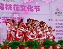 桃花节开幕式24