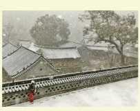 大风口初雪