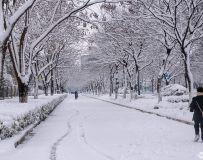 雪满行人路