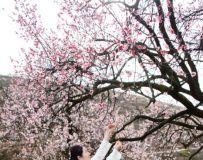 春日人像习拍3