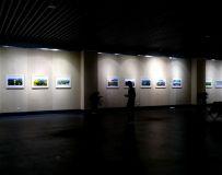 滁州庆祝改革开放40周年书画 摄影展
