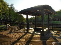 湿地草亭--光影