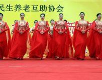 海南省民生养老互助协会迎新春群众演出集锦14