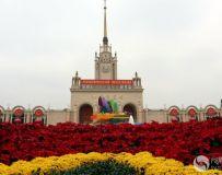 北京展览馆建国70周年大型成就展——国庆花车展(4)