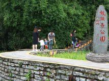 龙头寺公园摄影活动