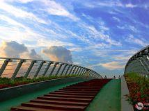 彩虹桥上彩霞飞