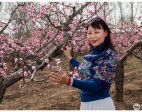 《桃园春色》