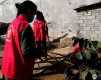 社区志愿者协会开展百名志愿者文明乡村行走进石桥镇 20