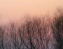《夕阳西下》