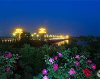 南阳大桥夜色美