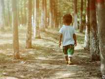 岁月在树干上斑驳,看见小时候