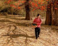 环境人像——柿子红满天(5)