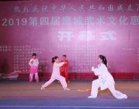 惠民武术文化活动(4)