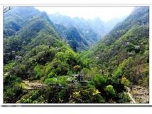 西峡老君洞·野人谷生态养生旅游区