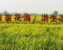 2019中国·方城第三届牡丹花节暨万亩花海旅游节摄影大赛启事