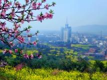 """""""美丽淅川""""全国摄影大赛参赛作品--《山城春色》"""