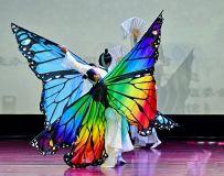 舞蹈--化蝶3