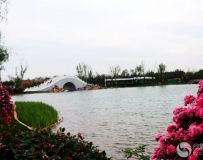 南阳世界月季大观园采撷(35)——西湖