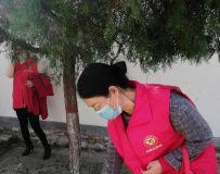 社区志愿者协会开展百名志愿者文明乡村行走进石桥镇 15