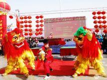 年味参赛作品---《雄狮贺岁闹新春》组照