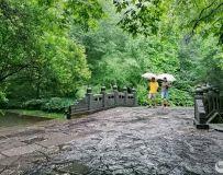 秋雨 • 秋景(滁州琅琊山)