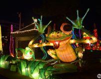 县衙灯展之  青蛙和强