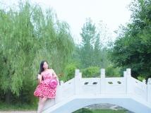 回来吧,我在桥边等你。