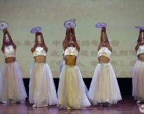 舞蹈--鳯之歌13