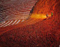 《耕耘红土地》