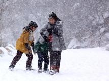 【14年第6期月赛】风雪中