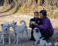 《祖孙俩》李菊英18303756355河南平顶山