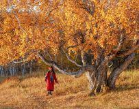 秋天留个影