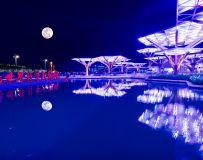 魅力示范区-南阳世界月季大观园