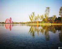 秋染月季大观园