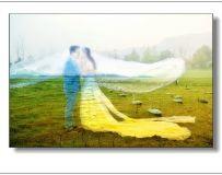 天鹅湖之恋