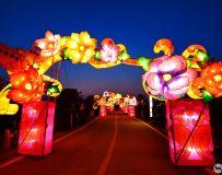 德云山植物园彩灯7