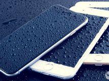 手机掉进水后怎么办?猫砂比米缸更有用