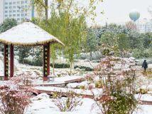 雪后湿地公园