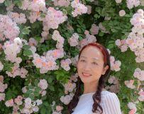 蔷薇花开(8)
