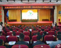 社旗县新的社会阶层人士联合会第一次代表大会暨成立大会
