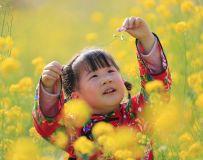 小村姑赏花
