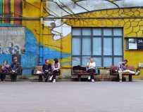 11月月赛《音乐公园里的老百姓》(组照)(手机拍摄))